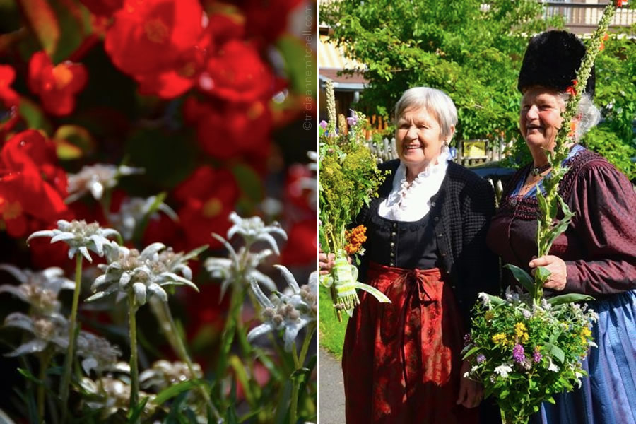 Women holding bouquets of flowers on Maria Himmelfahrt Day in Bavaria.