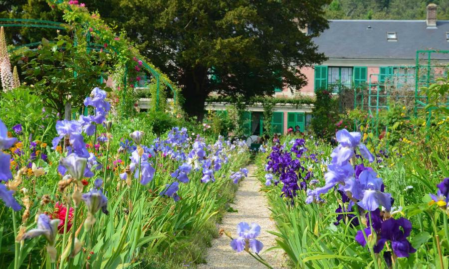 Claude Monet's pink home, surrounded by purple irises and other flowers. It's located in Giverny, France.