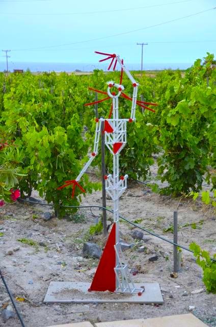 Santorini wine tasting Greek wine62