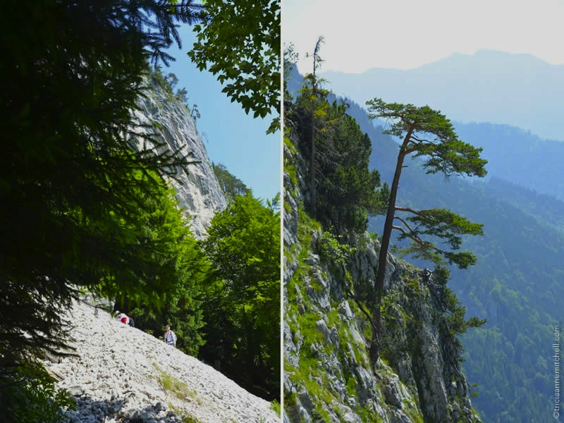 Climbing Kofel Oberammergau 5
