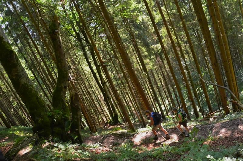 Hiking in Oberammergau