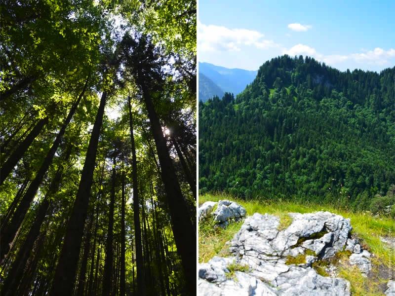 Kofel Climb in Oberammergau 8