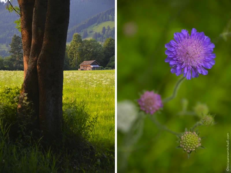Oberammergau pictures