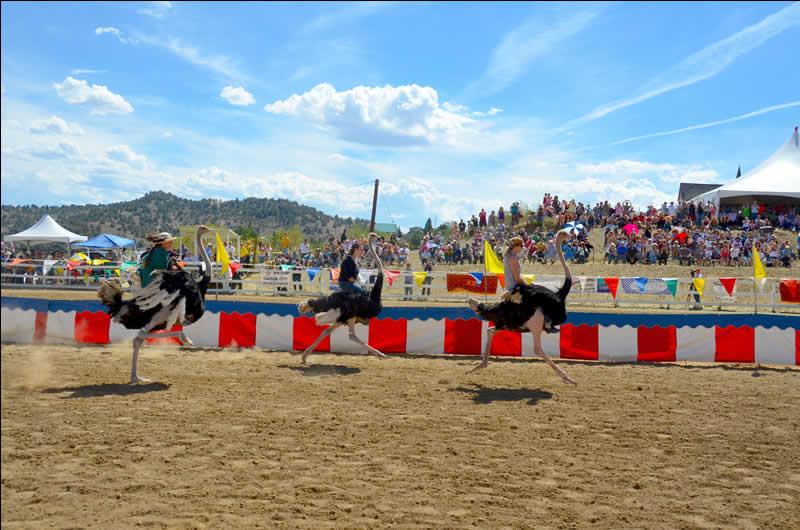Virginia City Ostrich Races