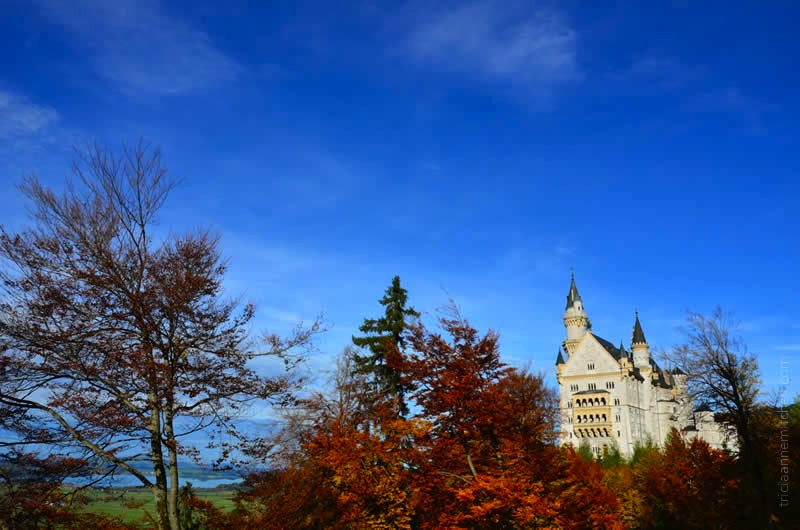 Neuschwanstein Castle Germany 19