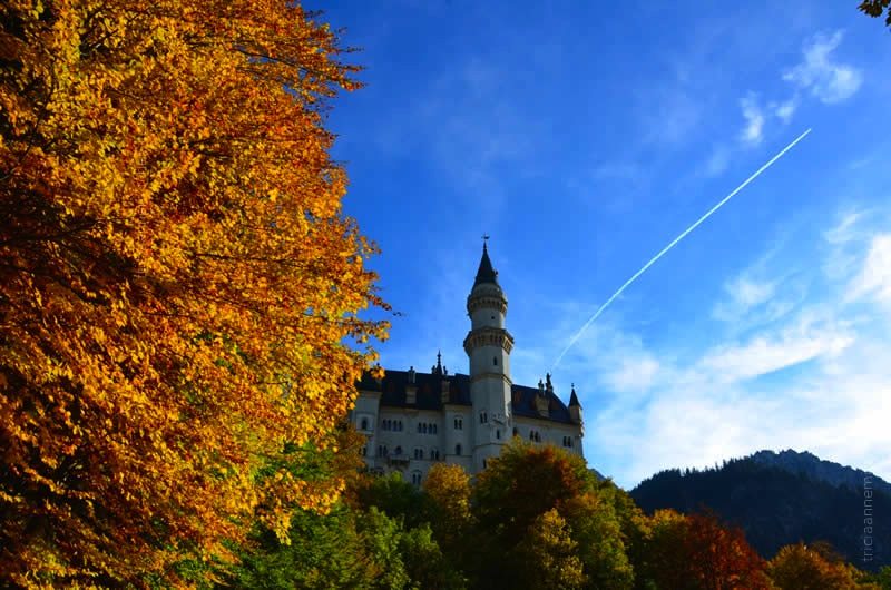 Neuschwanstein Castle Germany 21