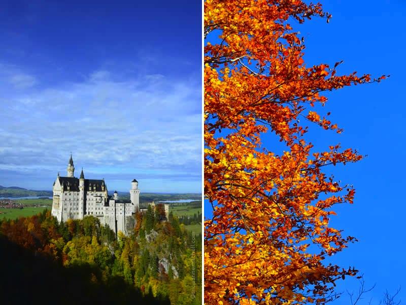 Neuschwanstein Castle Germany 29