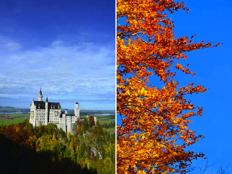 Neuschwanstein Castle, on an autumn day and blue skies overhead.