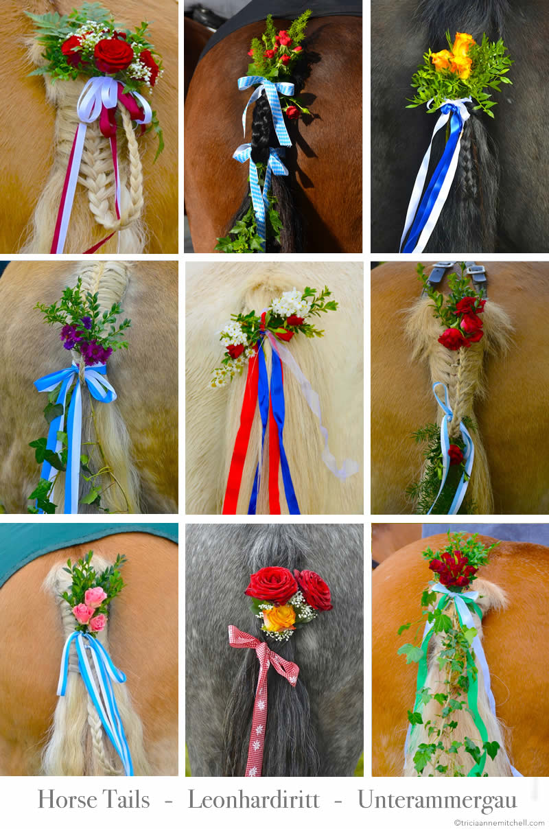 Tails From A German Horse Blessing Ceremony Travels With