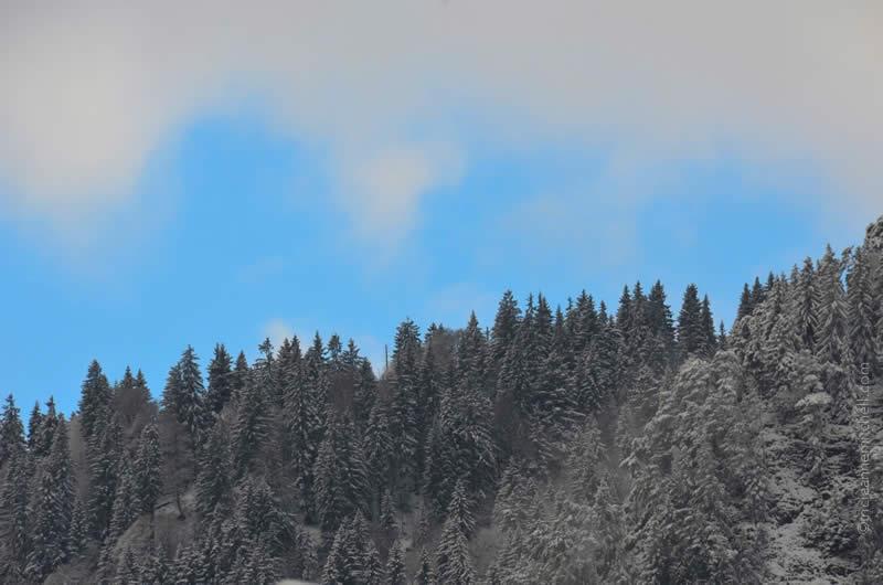 Oberammergau Kofel in snow 2