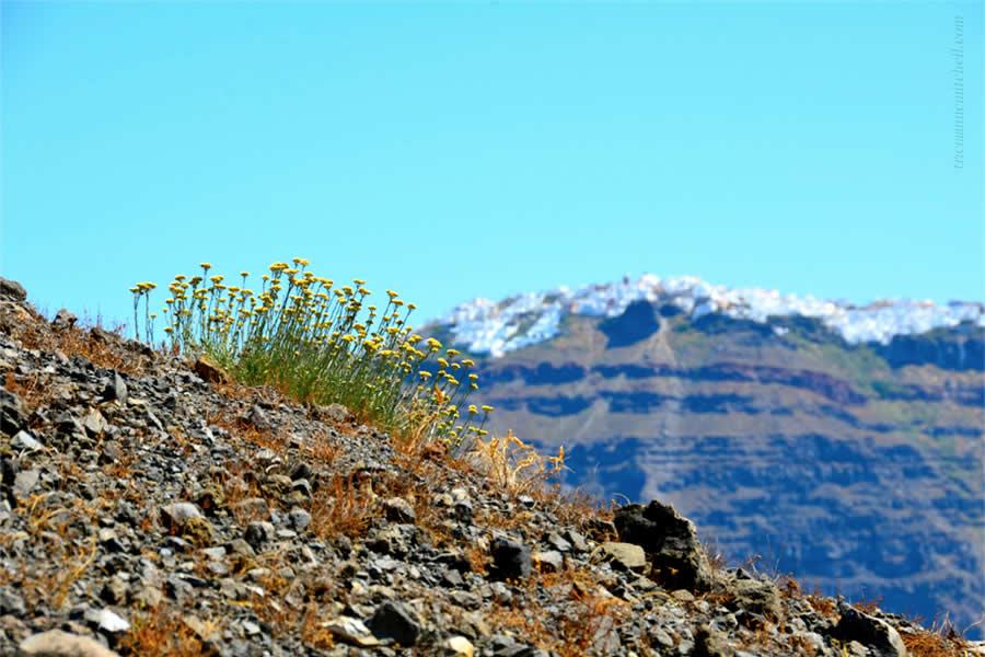 Santorini Volcano Tour Nea Kameni 2