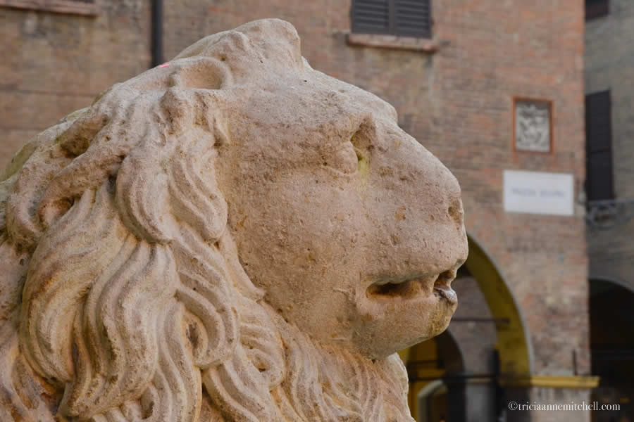 Duomo Modena Cathedral Lion