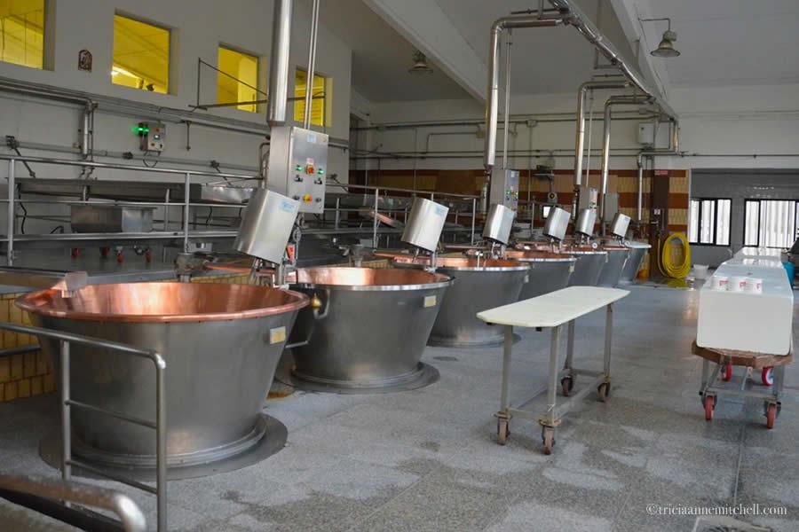 Hombre Parmigiano Reggiano Cheese Farm Production storage