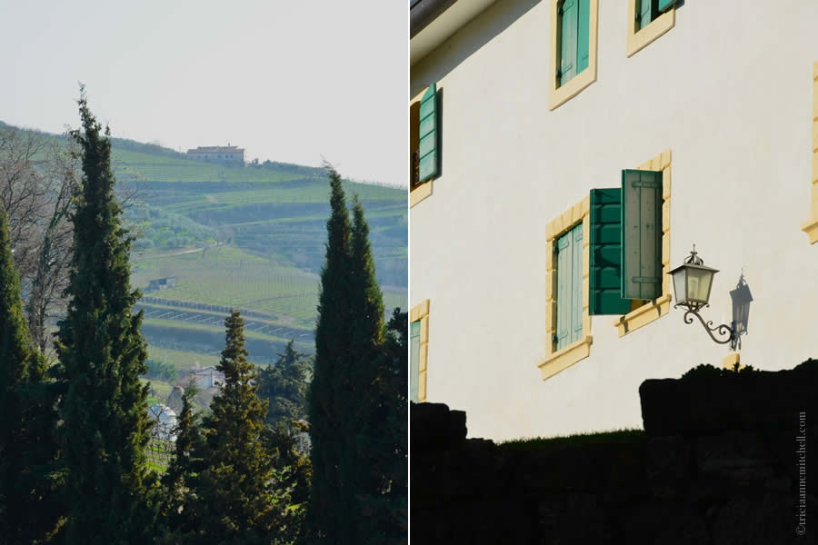 Massimago Winery Verona Italy