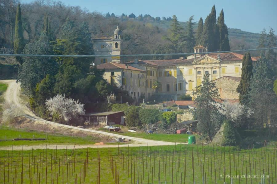 Veneto Italy Wine Country