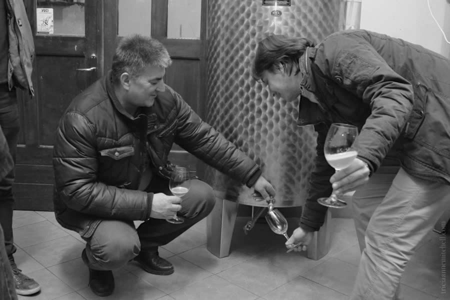 Krolo Winery Vats
