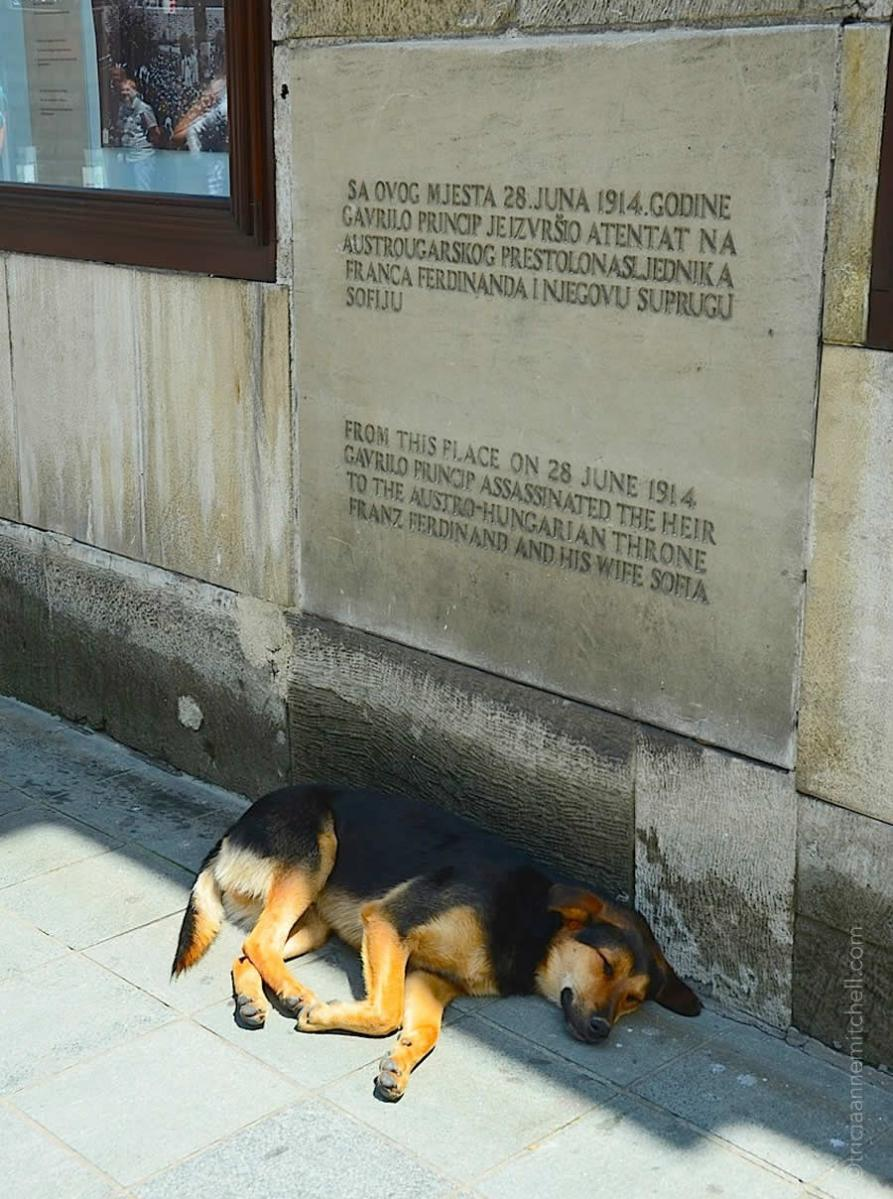 A Peaceful Nap In Sarajevo 100 Years Later Travels With