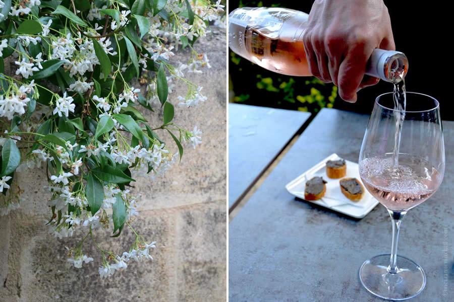 Tasting Rosé in Bordeaux