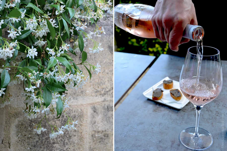 Tasting Rosé in Bordeaux