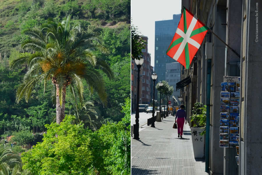 Basque Country Flag and Palm Tree Bilbao