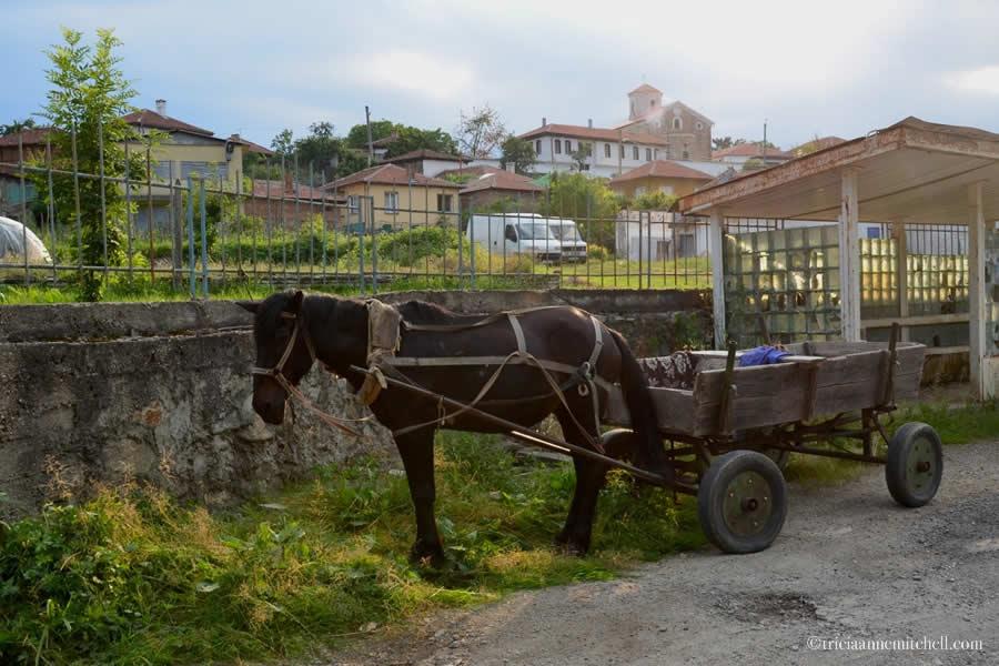 Kalofer bulgaria Horse Wagon