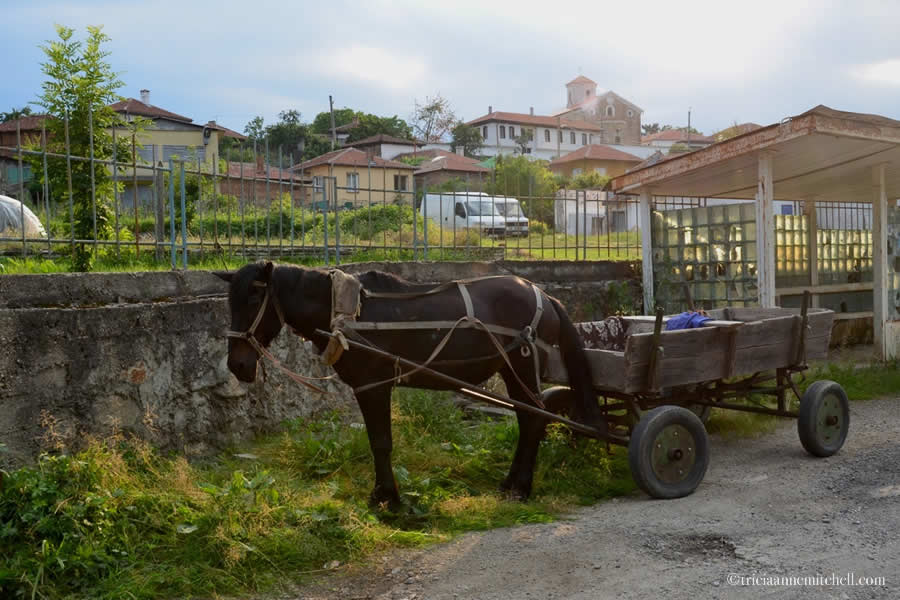 Kalofer bulgaria Horse Wagon