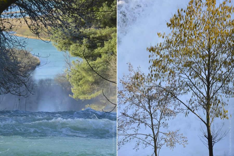 Krka National Park Waterfalls and Trees