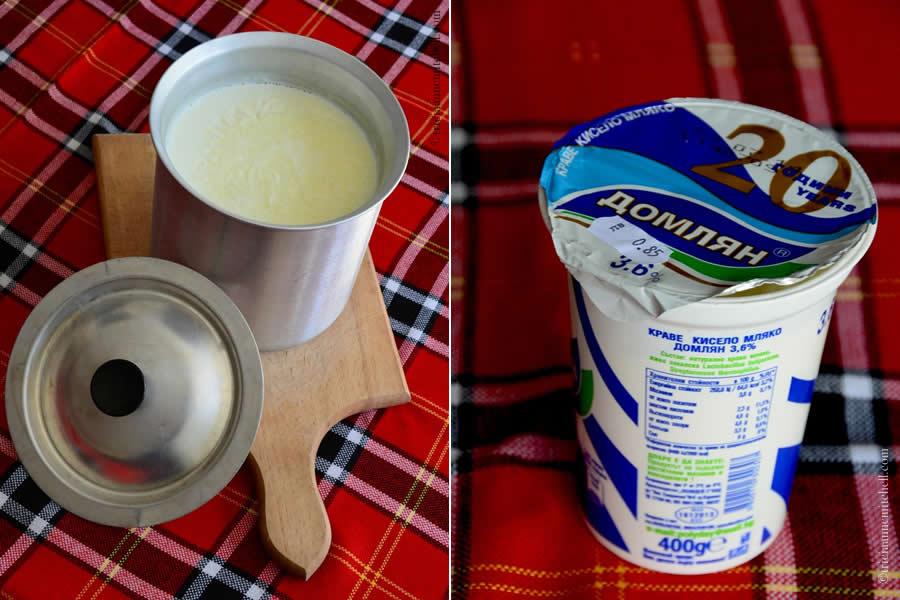 Lactobacillus Bulgaricus Bulgarian Yogurt