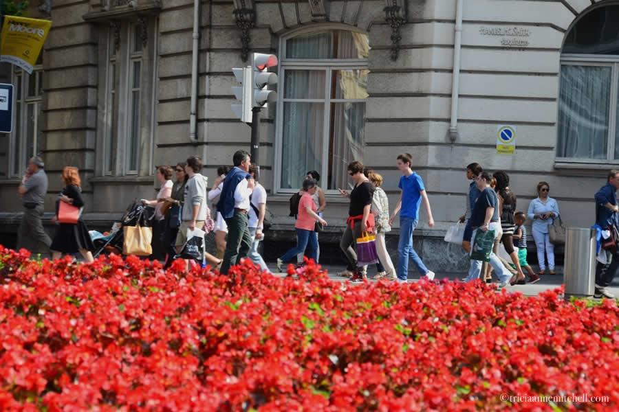 Plaza Circular Bilbao