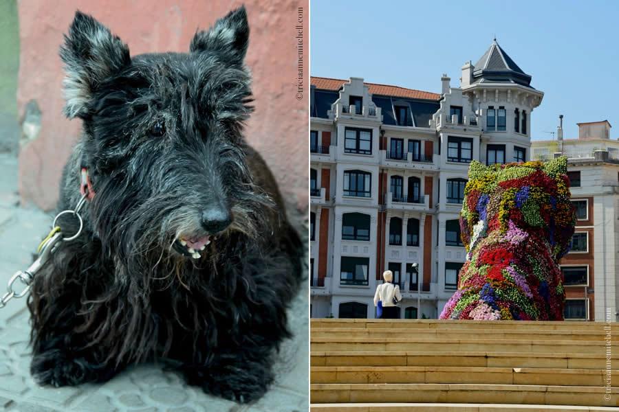 Puppy Guggenheim Dog Topiary Bilbao Museum
