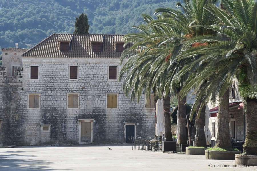 Stari Grad Hvar Palm Trees