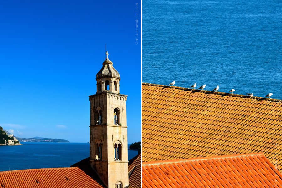 Dubrovnik Seagulls on Rooftop