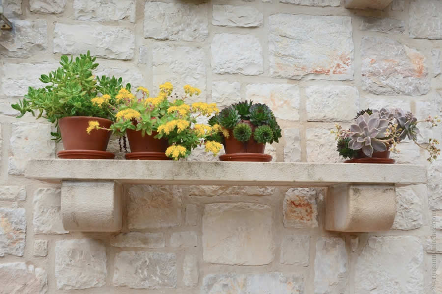 Hvar Flower Pots