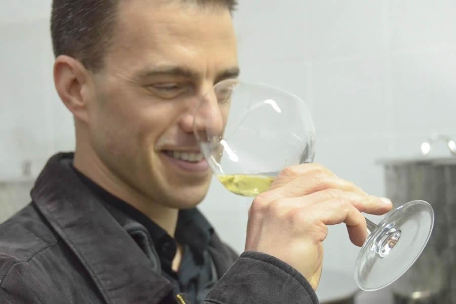Wine Tasting Hvar Croatia