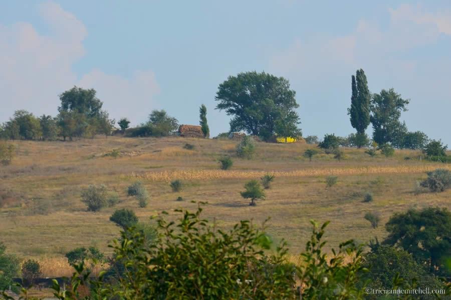 Moldova Countryside Rosu