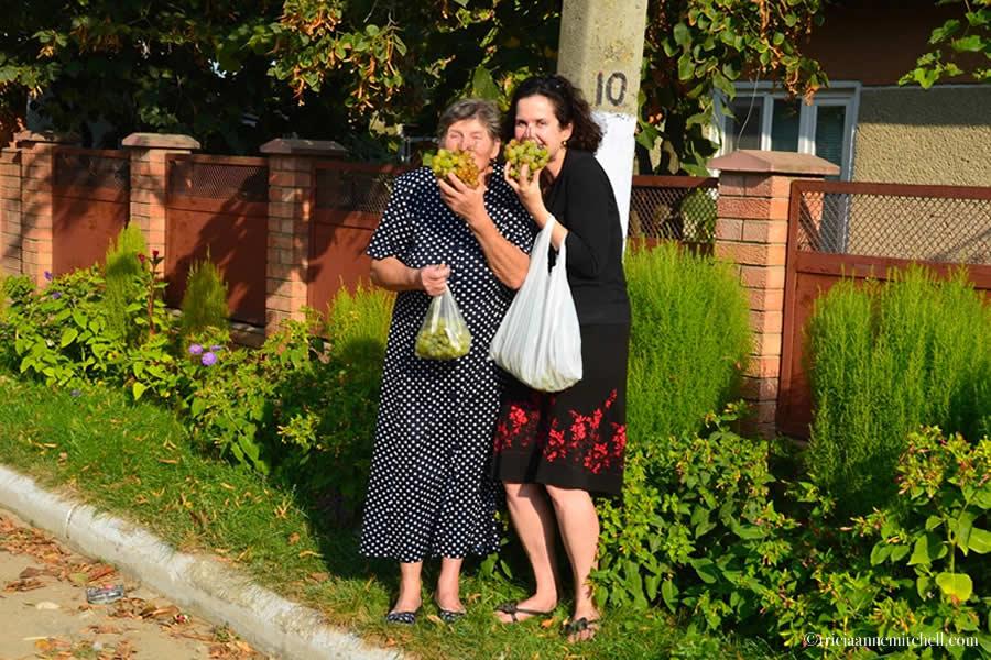 Moldova Grapes Village