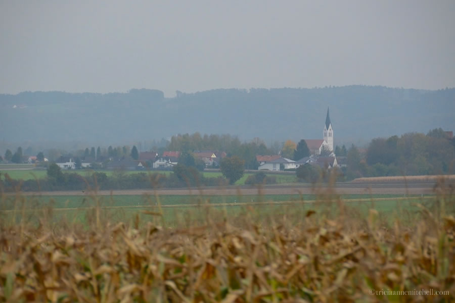 German countryside from train window