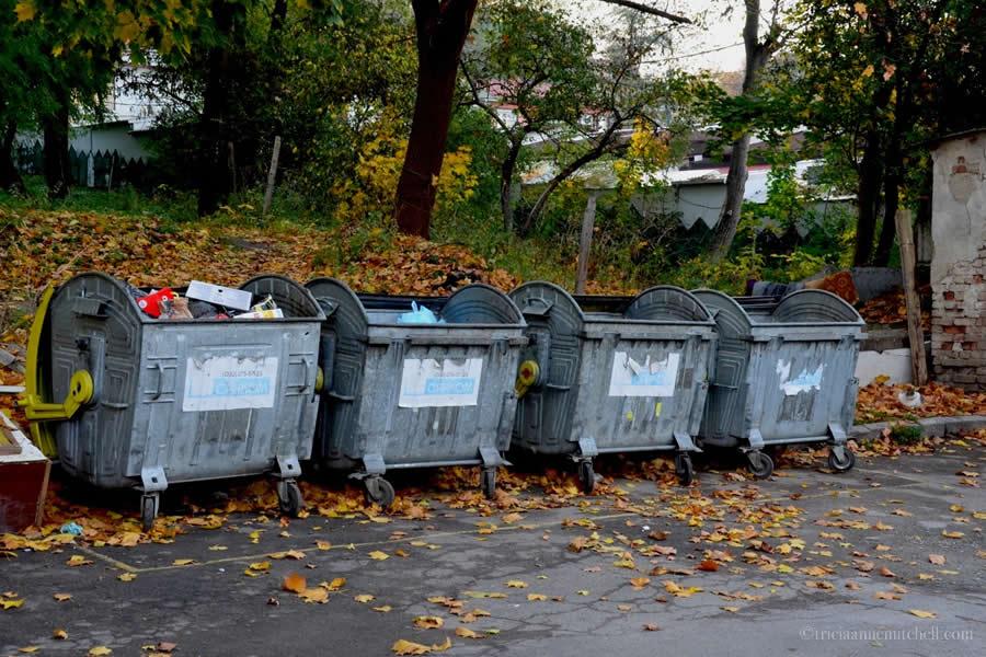 kitten thrown by dumpsters