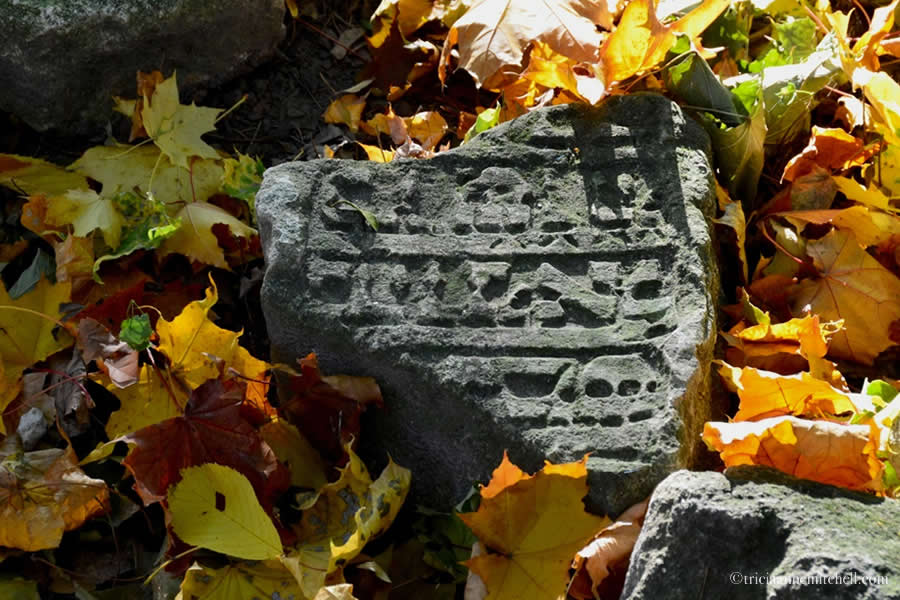 Lviv Ukraine Jewish Cemetery Headstone fragment