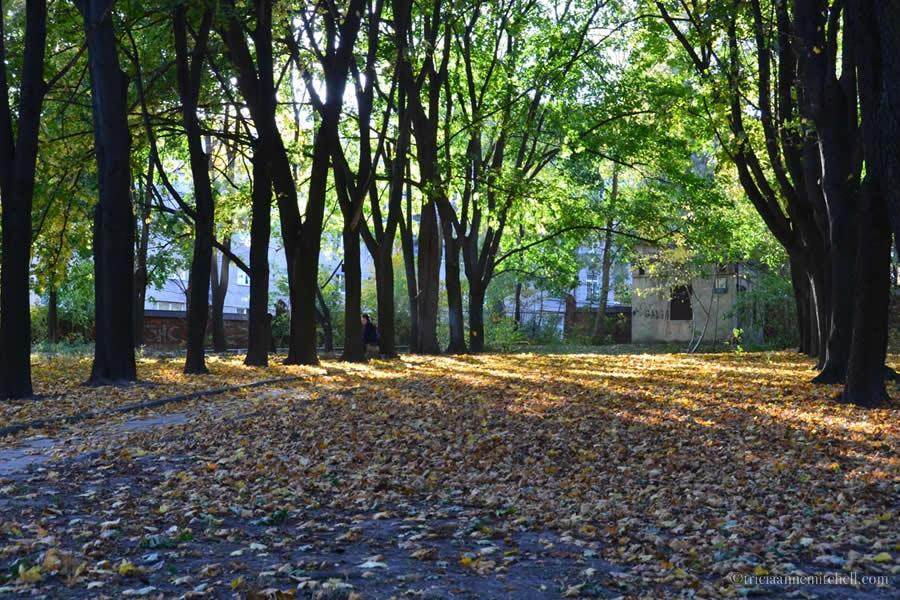 Lviv Ukraine Jewish Cemetery Hospital