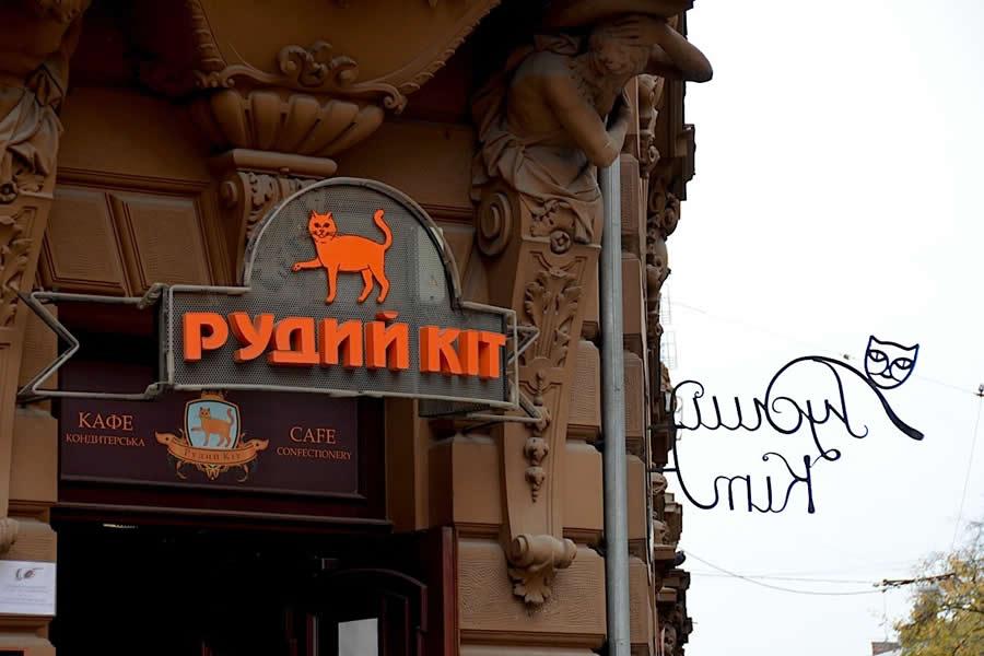 Red Cat Lviv