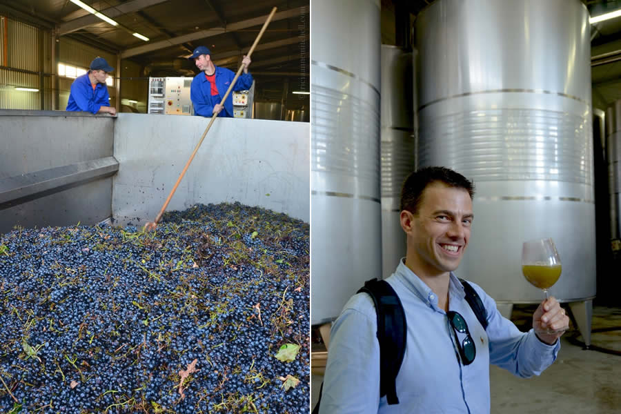 Chateau Vartely Wine Production Moldova