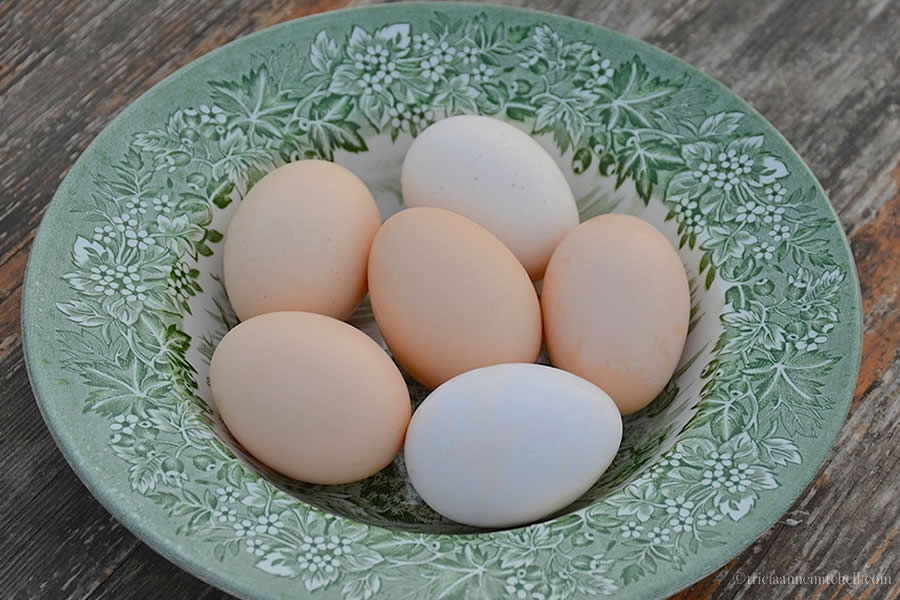 Eggs Moldova