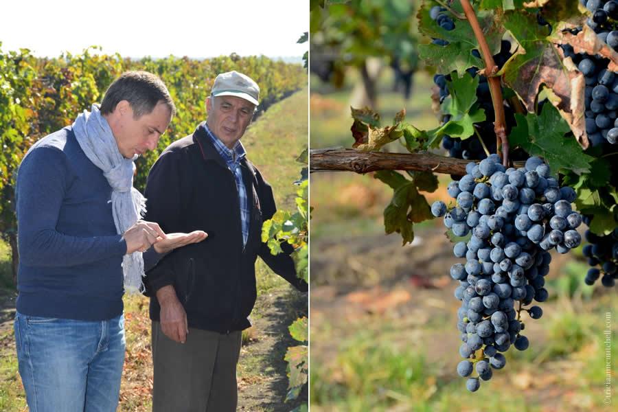Et Cetera Winemaker Alexandru Luchianov