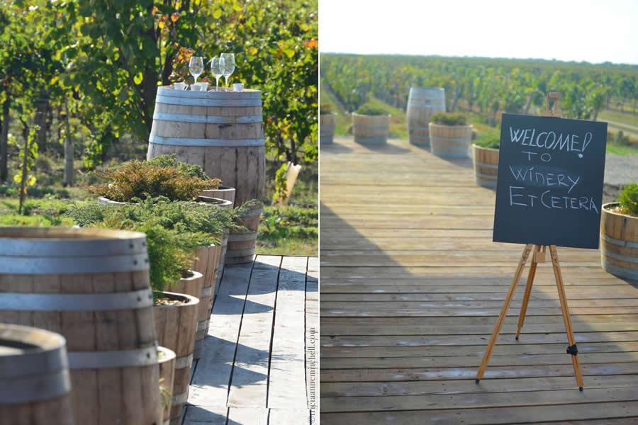 Et Cetera Winery Moldova 6