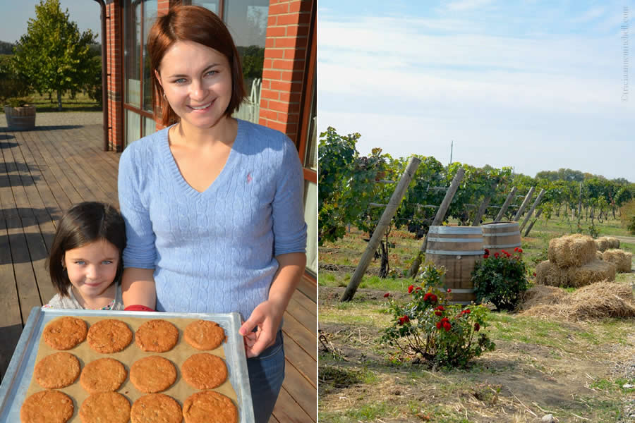 Et Cetera Winery Moldova Cookies Vineyards