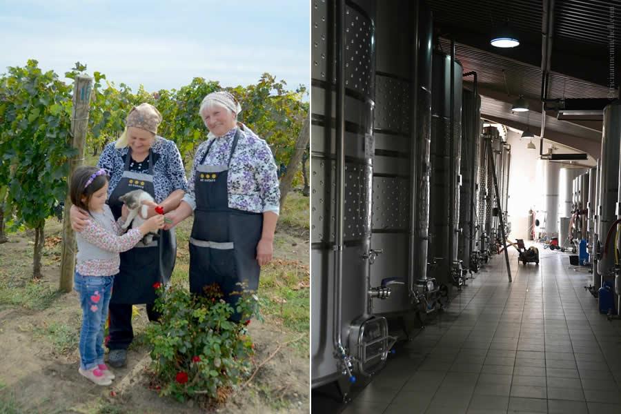 Et Cetera Winery Moldova Family