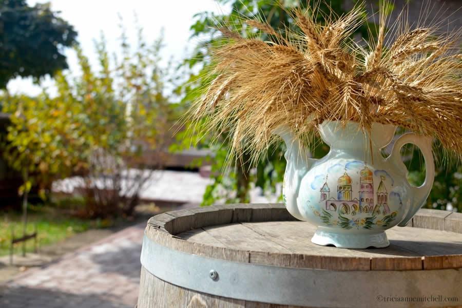 Et Cetera Winery Visit 5