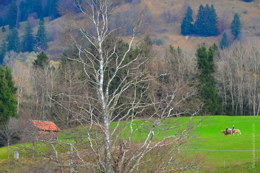 Unterammergau horse blessing 2