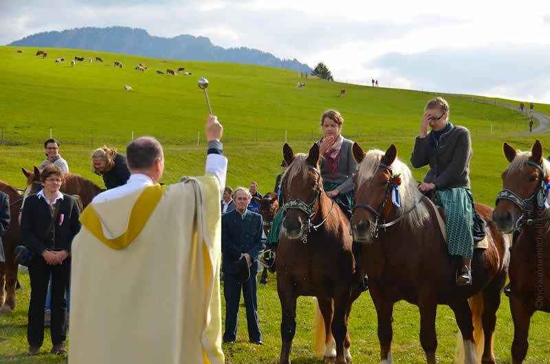 Unterammergau horse blessing in germany